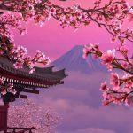Hanafuda mon amour - des origines de la création